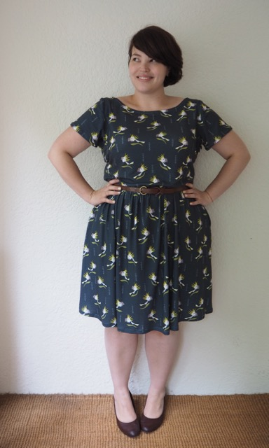Frocks and frou frou, plus size, dress, plus size dress, home made dress, cockatoo print, colette dress, moneta dress